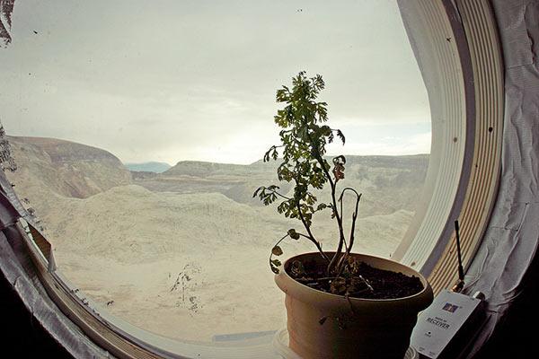 Фото №8 - Марс на Земле