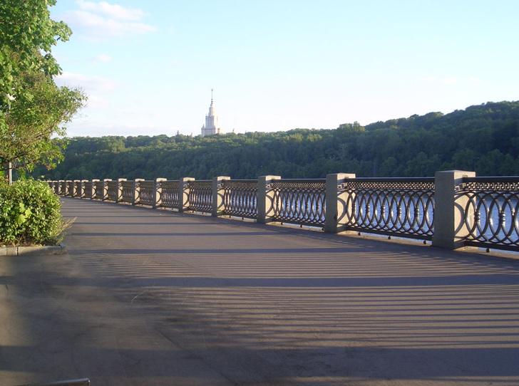 Фото №8 - Путешествие из Петербурга в Москву: куда сходить и что почитать в двух столицах