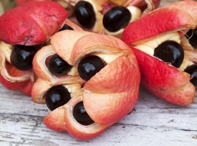Фото №6 - 12 фруктов, которые вы обязательно должны попробовать этим летом