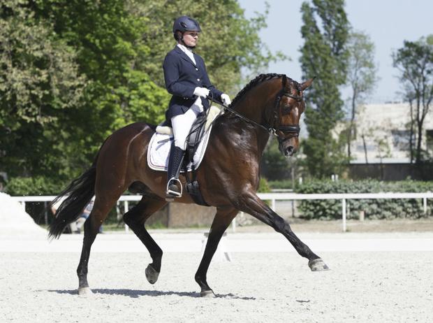 Фото №8 - Королевский спорт: что нужно знать о верховой езде