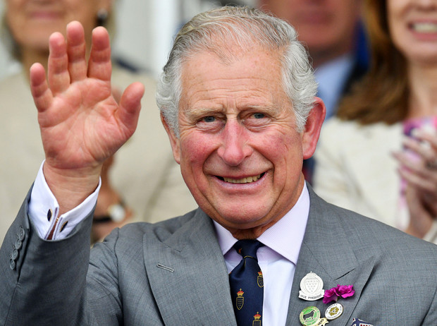Фото №1 - Принц Чарльз познакомился с Арчи Сассекским
