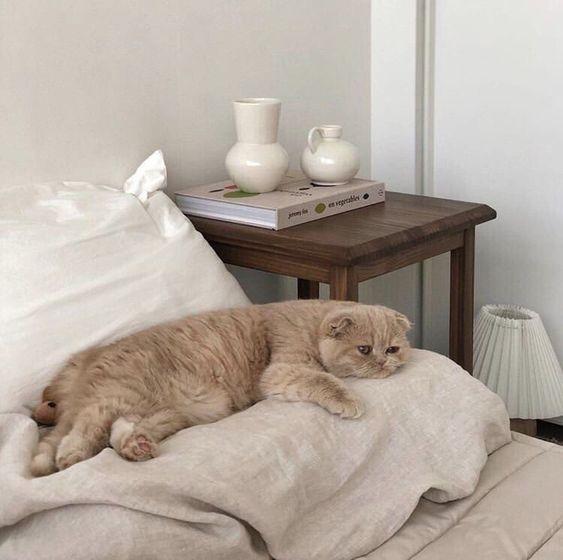 Фото №1 - Как наладить режим сна, если вы чертовски устали