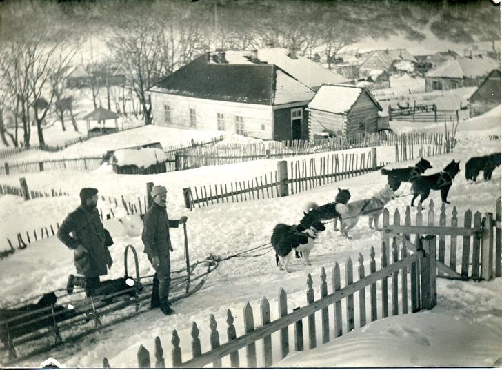 Фото №3 - РГО отмечает 175-летний юбилей