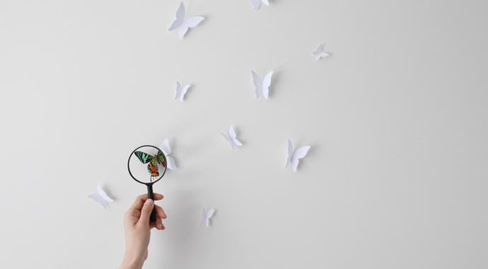 Эффект бабочки: как легко достигать целей