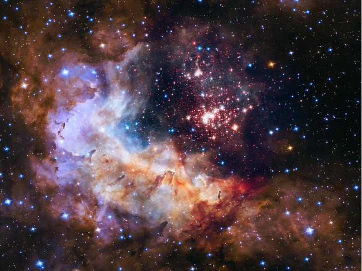 Фото №1 - Фейерверк звезд