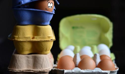 Фото №1 - Диетолог: «Начитаются в интернете про ЗОЖ и начинают уплетать яйца с утра до ночи»