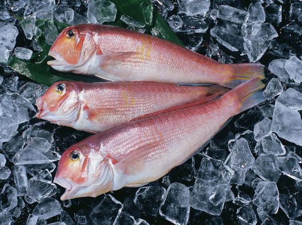 Фото №4 - 10 видов рыбы, которую лучше не есть