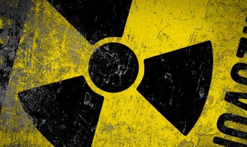 Фото №1 - Роспотребнадзор нашел в Петербурге радиоактивную воду и ягоды
