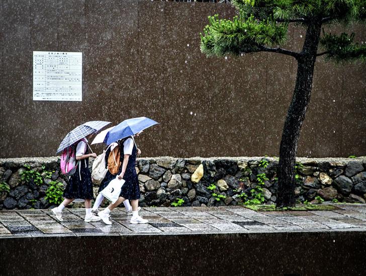 Фото №5 - Коллективное сознательное: как воспитывают детей в Японии