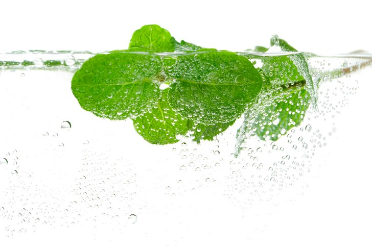 Фото №4 - H2O +1: вода с мятой