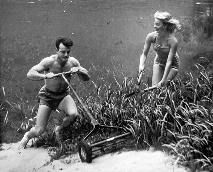 Фото №4 - В тихом омуте: история фантастических подводных фото Брюса Мозерта