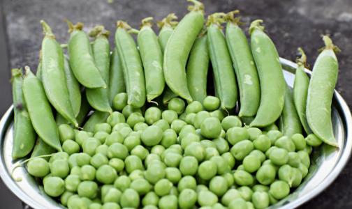 Фото №1 - Эксперт назвал самые токсичные продукты с огорода