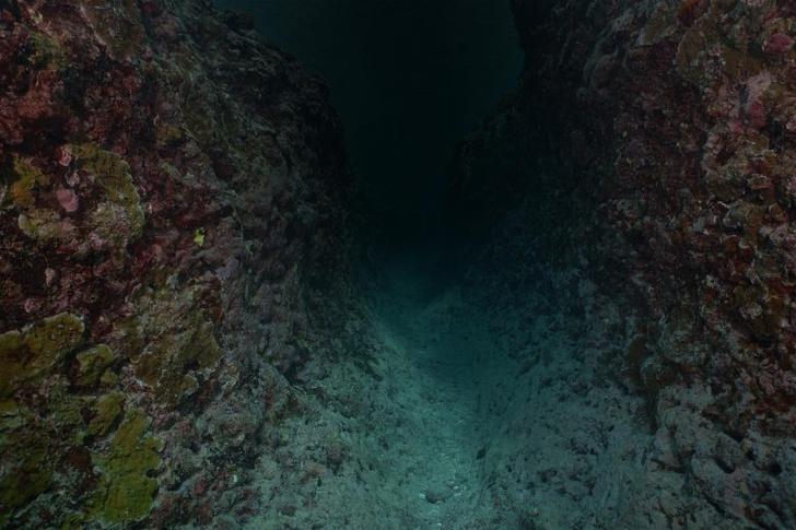 Фото №1 - На дне Тихого океана обнаружено аномальное количество ртути
