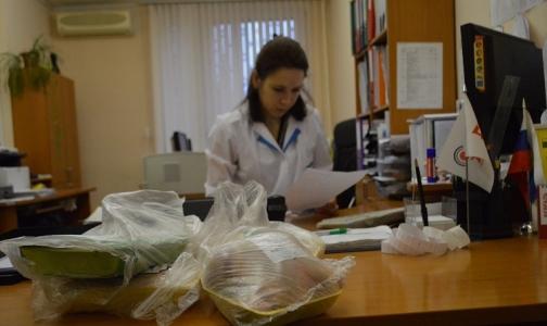 Фото №1 - В Петербурге проверили мясо курицы на антибиотики и токсичные вещества