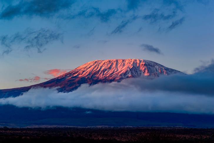 Фото №1 - Семилетняя девочка покорила Килиманджаро