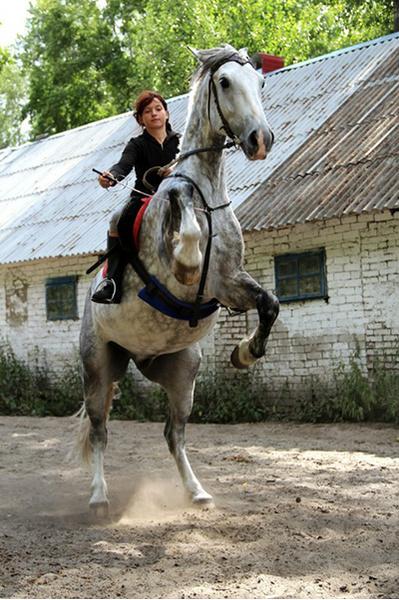 Фото №52 - Девушки на коне: самые романтичные наездницы Ульяновска