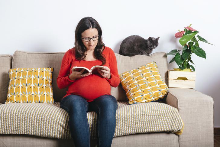 Фото №1 - Домашние животные: риски для беременной