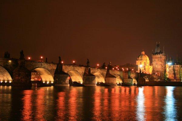 Фото №7 - Голуби эзотерической столицы