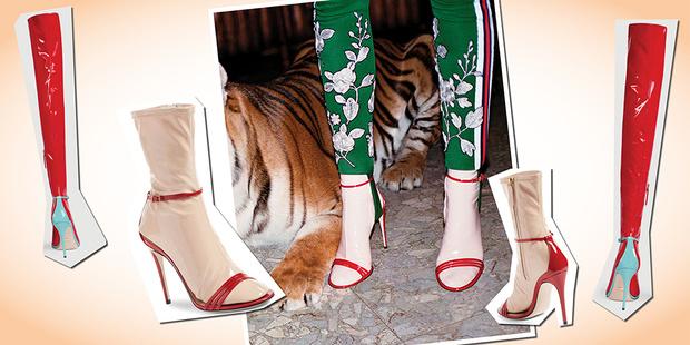 Фото №1 - Сколько стоят носочки, как у надувной куклы? В Gucci знают ответ