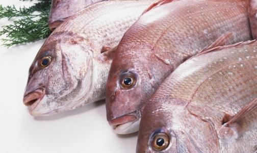 Фото №1 - Морская рыба оказалась опасной для мужчин