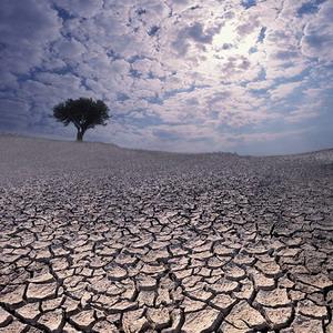 Фото №1 - Ужасы глобального потепления