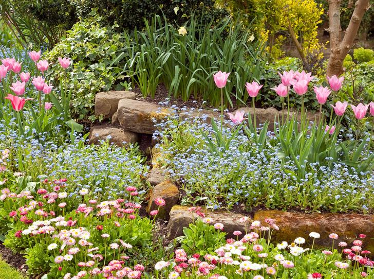 Фото №3 - Сад мечты: 6 оригинальных идей для дачного участка