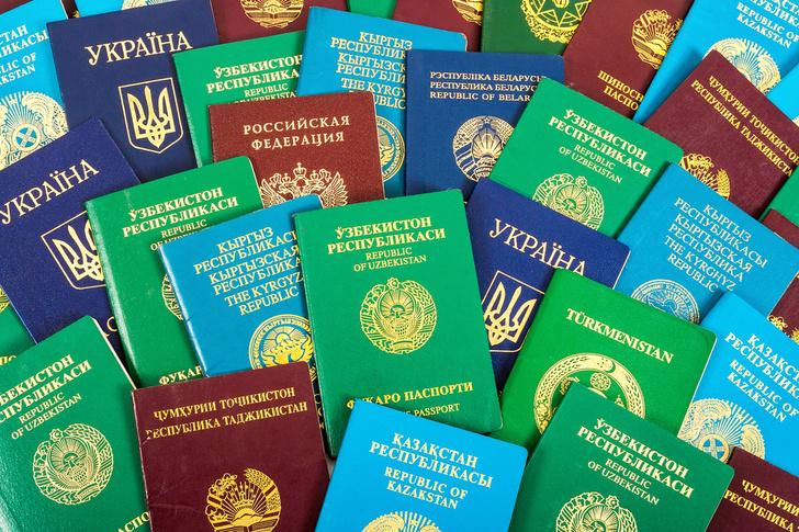 Фото №1 - Эксперты объяснили, от чего зависит цвет паспорта