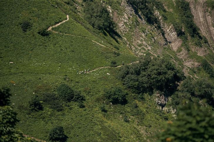 Фото №1 - В Красной Поляне открылась Черничная тропа протяженностью более 19 км