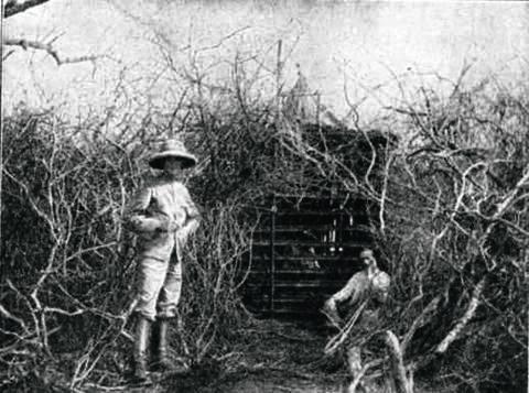 Фото №9 - Кровожадная история самого знаменитого в истории противостояния между человеком и львом