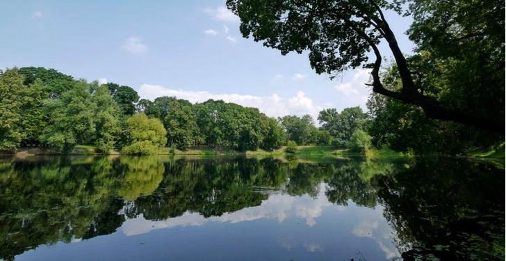 Фото №1 - Голландская суббота в Лефортовском парке