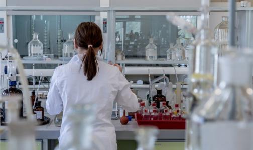 Фото №1 - В Петербург поступили тест-системы для выявления нового коронавируса