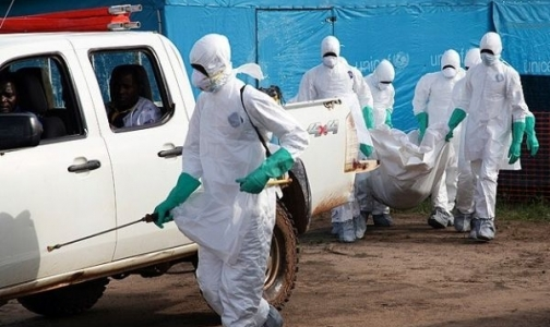 Фото №1 - Жертвами лихорадки Эбола стали 79 медиков