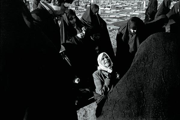 Фото №1 - Зеленая буря над Ираном