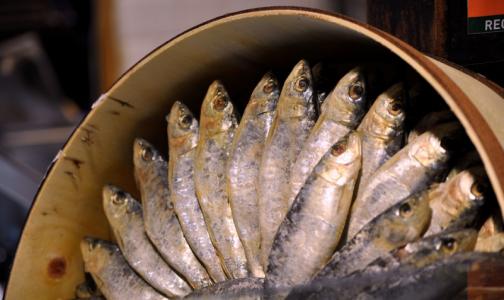 Фото №1 - В Роскачестве определили рыбные консервы, которые нельзя есть