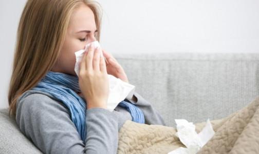 Фото №1 - НИИ гриппа: В России зарегистрировали три случая гриппа, два из них в Петербурге