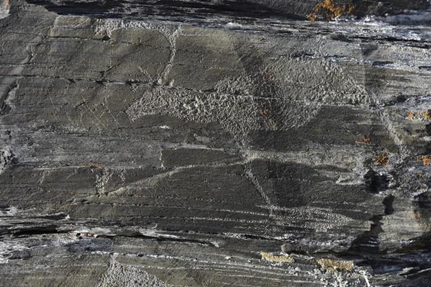 Фото №1 - Археологи создали карту чукотских петроглифов