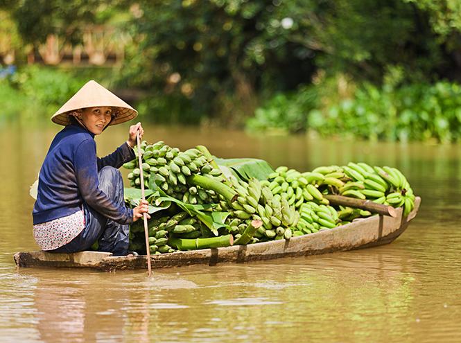 Фото №4 - Вьетнам: как он становится премиальным направлением туризма