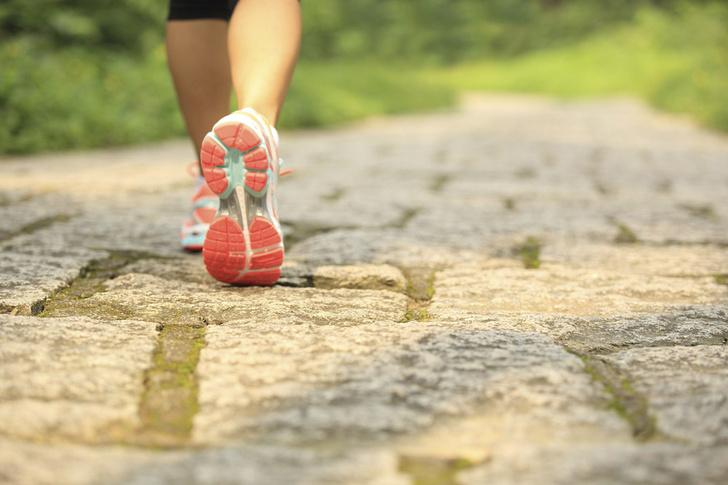 Фото №1 - Ежедневная 20-минутная прогулка может продлить жизнь на 7 лет