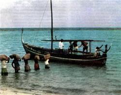 Фото №4 - Тайна тысячи островов