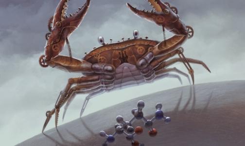 Фото №1 - Ученый из ИТМО придумал, как заморить рак голодом