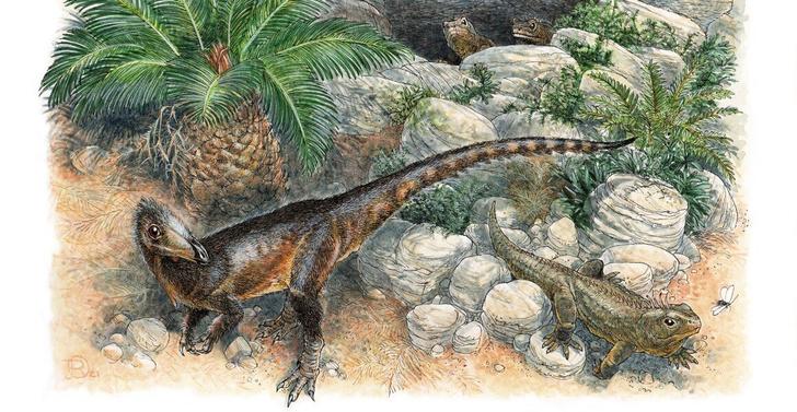 Фото №1 - Обнаружен древнейший хищный динозавр Великобритании