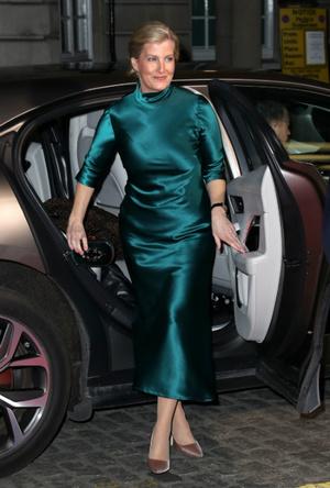 Фото №3 - Серый кардинал стиля: «любимая невестка Королевы» и ее новая особая миссия