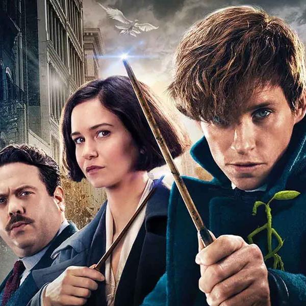 Фото №1 - «Фантастические твари 3» раскроют все секреты Дамблдора— и мы уже знаем, когда 😎