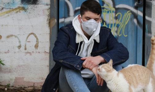 Фото №1 - В Оперштабе по борьбе с коронавирусом назвали средний возраст заболевших
