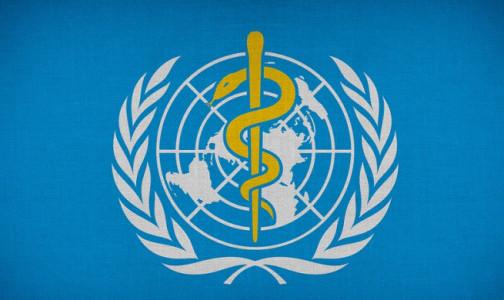 Фото №1 - Послали в ВОЗ. Специалисты международной медицинской организации оценят новосибирскую «ЭпиВакКорону»