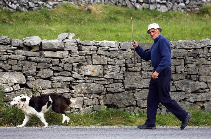 Фото №1 - Голос крови: летучие ирландцы