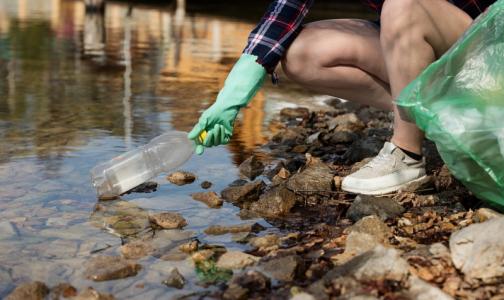 Фото №1 - Greenpeace рассказал, чем загрязнены берега рек и озер Петербурга