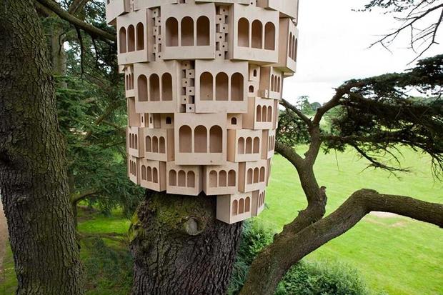 Фото №3 - Дома для птиц в Великобритании