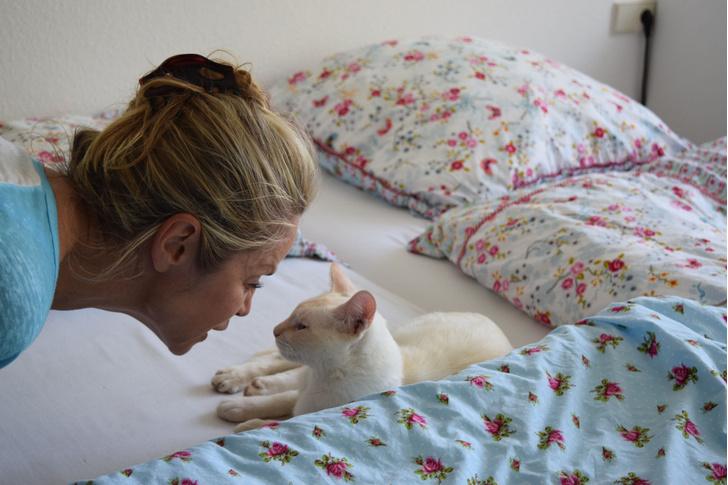 Фото №1 - Ученые рассказали об эмоциональной связи женщин и кошек