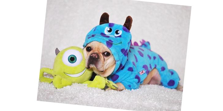Фото №4 - 20 очаровательных собак в костюмчиках по мотивам мультфильмов Disney